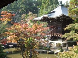 清涼寺の中庭はほんのり色づいていた