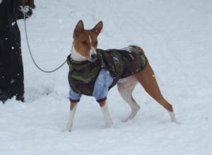 雪は楽しい~~!