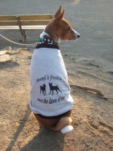これでもモデル犬なのだっ!